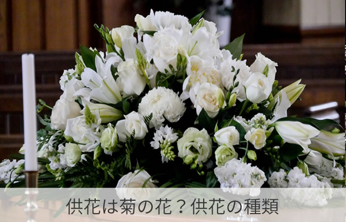 供花は菊の花?供花の種類