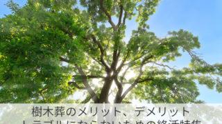 樹木葬のメリット、デメリット|トラブルにならないための終活特集