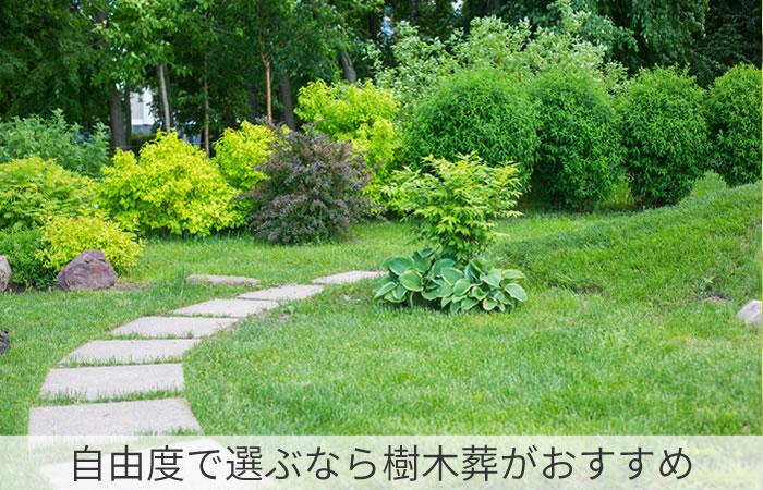自由度で選ぶなら樹木葬がおすすめ